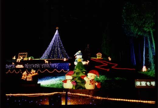 森のクリスマス
