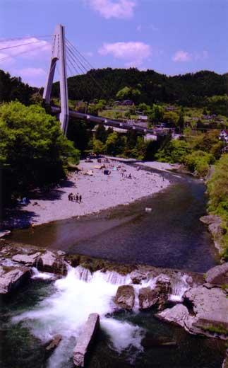 新緑の多摩川