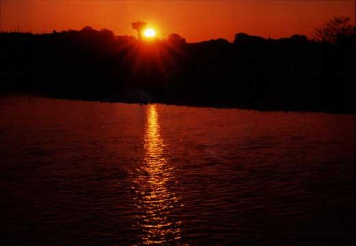 夜明けの多摩川