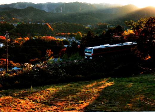夕日の紅葉路