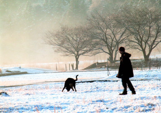 雪とたわむれて