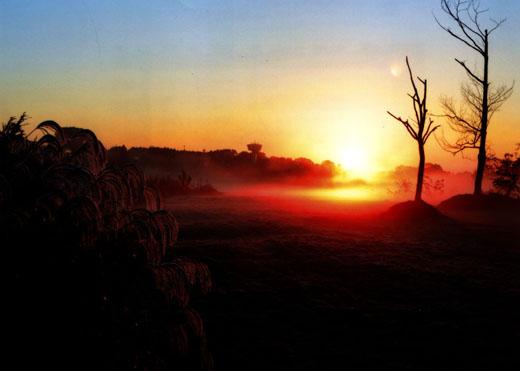 晩秋の陽光