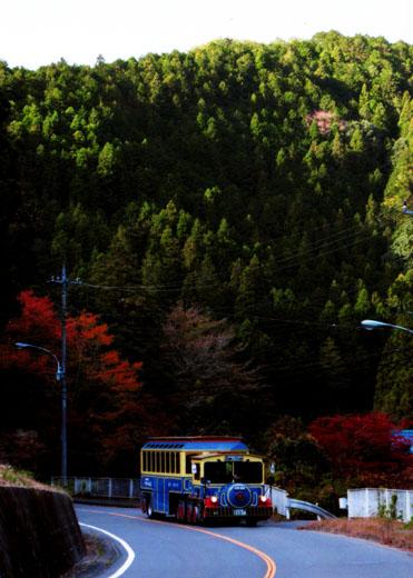 秋冷の温泉街道