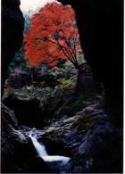 第4回 入選 神戸岩の秋