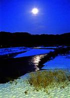 第13回 最優秀賞(日本カメラ社賞) 凍てつく月の光