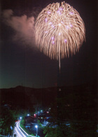 第14回 最優秀賞(日本カメラ社賞) 闇夜を照らす花
