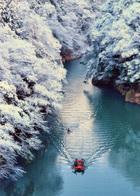 第14回 優秀賞(武陽ガス賞) 雪上がりの朝