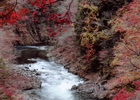 第14回 高校写真部奨励賞 川沿いの紅葉
