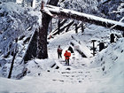 第16回 大多摩観光連盟賞 雪の参道