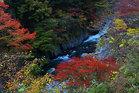 第16回 カメラのキタムラ賞 彩の渓谷