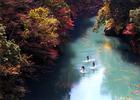 第17回 東洋システム賞 秋を楽しむ