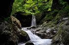 Oh!多摩 東洋システム賞 盛夏の神戸岩