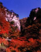 第5回 入選 神戸岩の秋