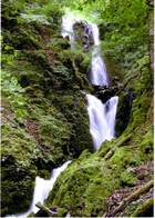 第4回 入選 マミ谷の滝