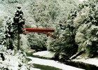 第2回 特別賞 雪の橋
