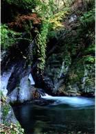 第4回 入選 日原川の滝