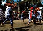 第12回 西武信用金庫賞 鳳凰の舞